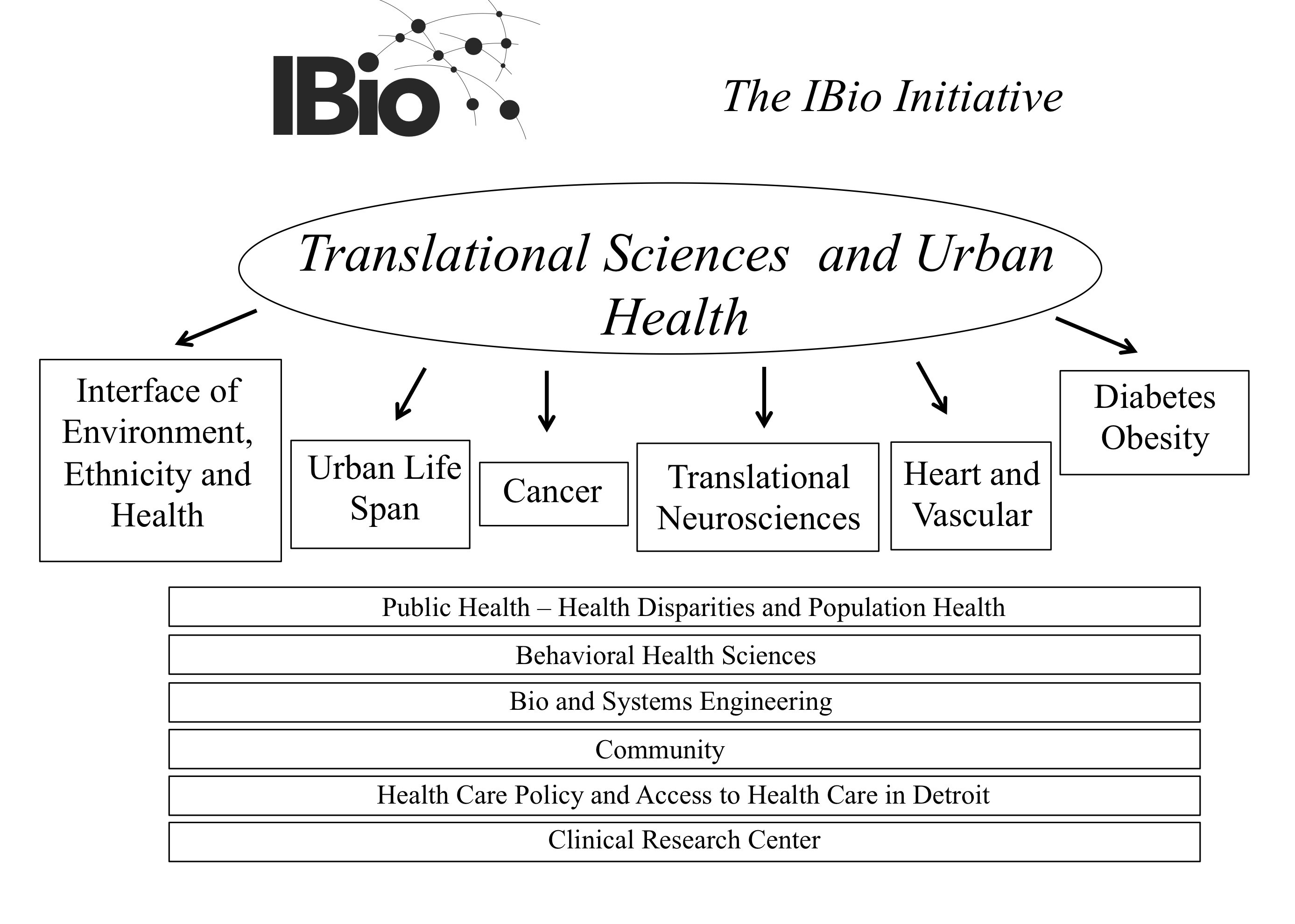 Translational Sciences and Urban Health Schematic